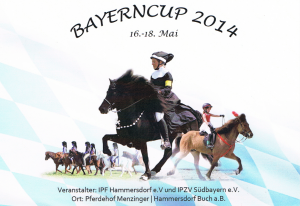 Bayerncup_2014_Flyer