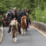 Natur und Kultur im Taubertal zu Pferd
