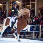 IceHorse 2017: Fünf Europameister im Islandpferdereiten auf Eis in Berlin gekürt