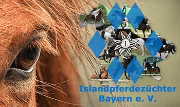 Ausschreibung Bayerische Fohlenreise 2020